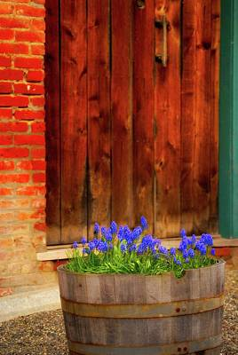 Photograph - Door And Flowers by Craig Perry-Ollila