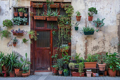 Photograph - Door And Plants by Gary Lengyel