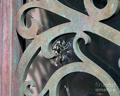 Photograph - Door Detail by David Chalker