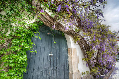 Photograph - Door Of Peace by Walt  Baker