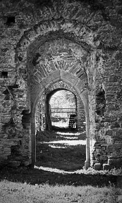 Doors At Ballybeg Priory In Buttevant Ireland Art Print