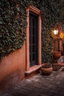 Doorway Through The Vines Art Print