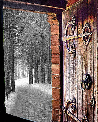 Digital Art - Doorway To Hadrian's Wood by Vicki Lea Eggen
