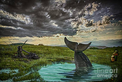 Digital Art - Dolphin Play by Melissa Messick
