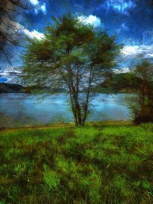 Photograph - Dorena Lake by Thom Zehrfeld