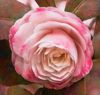 Doris Ellis Camellia Art Print by Cynthia Wolfe
