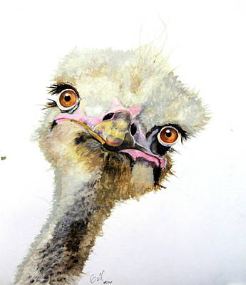 Emu Wall Art - Painting - Doris by Katharine Schafer
