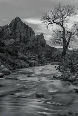 Photograph - Dormant 2 by Jonathan Nguyen