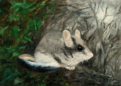 Painting - Dormouse by FT McKinstry
