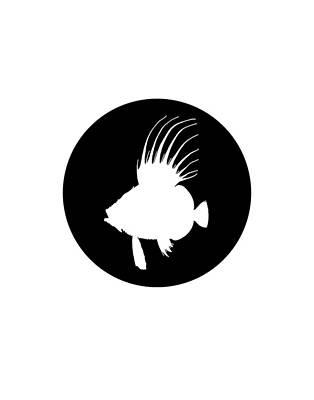 Animal Lover Digital Art - Dory Fish by Steph J Marten