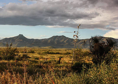 Photograph - Dos Cabezas Grasslands At Dusk by Lon Dittrick