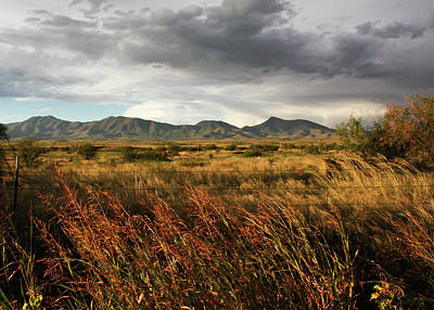 Photograph - Dos Cabezas Grasslands by Lon Dittrick