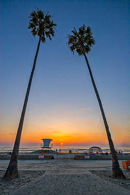 Palm Trees Photograph - Dos Palms by Peter Tellone