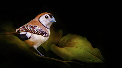 Artwork Of Butterfly Painting - Double Barred Finch Artwork 8948 by Linda King