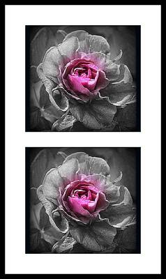 Photograph - Double Delight by Kimberly Woyak