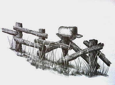 Mail Box Drawing - Double Duty Rail Fence by Diane Palmer