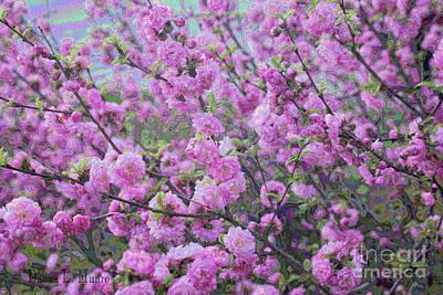 Digital Art - Double Flower Plum by Donna Munro