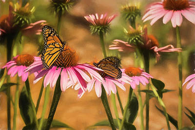 Photograph - Double Monarch Butterflies by Diane Schuster