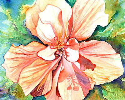 Painting - Double Peach Tropical Hibiscus by Marionette Taboniar