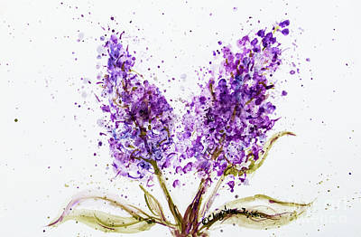 Typographic World Rights Managed Images - Double Purple Lilac Blossoms watercolor  Royalty-Free Image by CheyAnne Sexton
