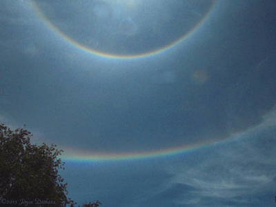 Photograph - Double Rainbow Rings Around The Sun by Joyce Dickens