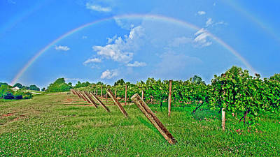 Double Rainbow Vineyard, Smith Mountain Lake Art Print