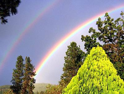 Photograph - Double Rainbow by Will Borden