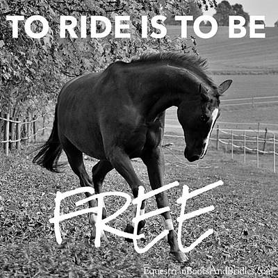Photograph - Double Tap If You Agree by Equestrian Boots And Bridles