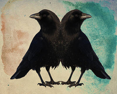 Blackbird Mixed Media - Twin Beaks by Gothicrow Images