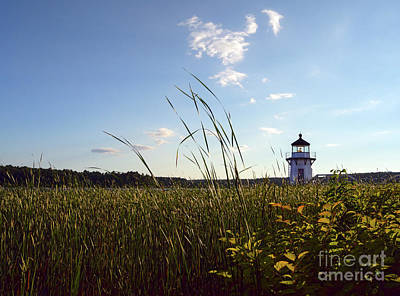 Photograph - Doubling Point Light, Arrowsic, Maine #40015 by John Bald