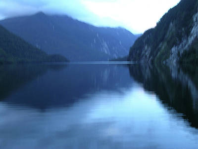 Photograph - Doubtful Sound, New Zealand No. 2 by Sandy Taylor