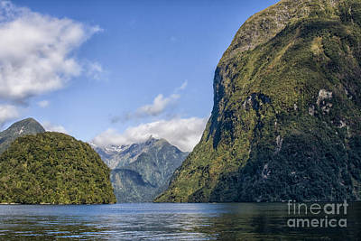 Photograph - Doubtful Sound by Patricia Hofmeester