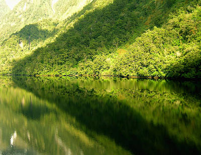 Photograph - Doubtful Sound, New Zealand No. 4 by Sandy Taylor