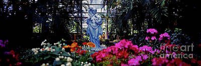 Photograph - Douglas Garfield Park Conservatory  Chicago by Tom Jelen