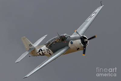 Planes Of Fame Photograph - Grummantbf Avenger 2011 Chino Planes Of Fame by Gus McCrea
