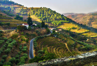 Photograph - Douro Valley Landscape by Alan Toepfer