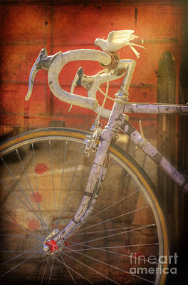 Photograph - Dove Bicycle by Craig J Satterlee