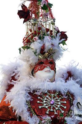 Photograph - Dove Carnival Model by John Rizzuto