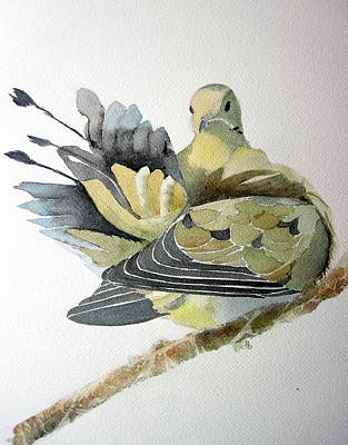 Wall Art - Painting - Dove by Dominique Bachelet