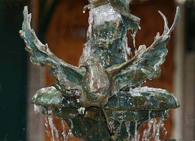 Photograph - Dove Fountain by Terry Burgess