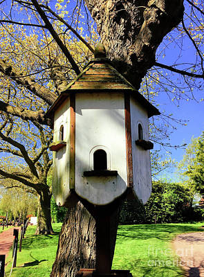 Photograph - Dove House by Tom Gowanlock