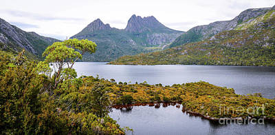 Photograph - Dove Lake And Cradle Mountain by Lexa Harpell
