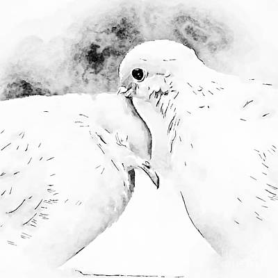Photograph - Dove Love - Black And White by Kerri Farley