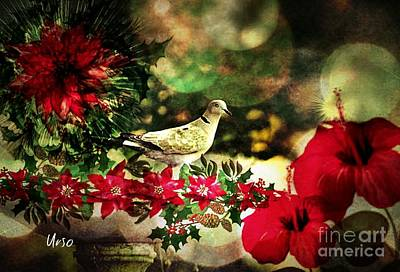 Photograph - Dove Of Christmas Peace by Maria Urso