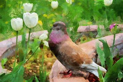 Dove With Tulips Art Print