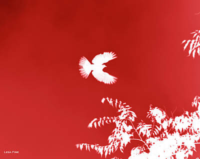Mixed Media - Doves Flight Red by Lesa Fine