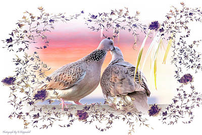 Digital Art - Doves In Love 0016 by Kevin Chippindall