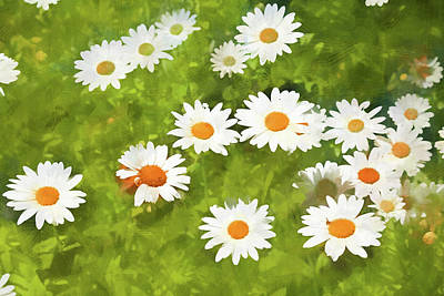 Photograph - Dow Garden Daisies 2 Painterly by Mary Bedy