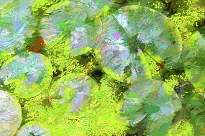 Photograph - Dow Gardens Lily Pads 4 Painterly by Mary Bedy