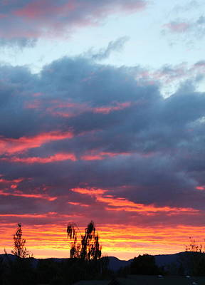 Photograph - Dowell Street Sunset View From Apt B by Marie Neder